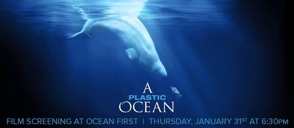A-Plastic-Ocean.jpg