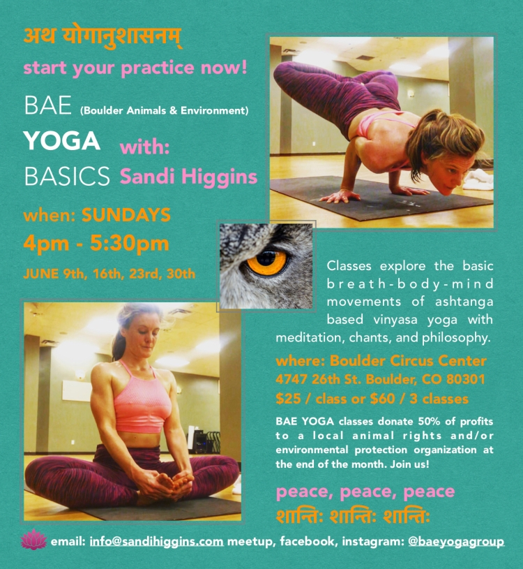 BAE YOGA BASICS JUNE 2019